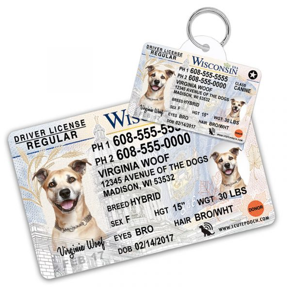 Wisconsin Driver License Wallet Card and Pet ID Tag