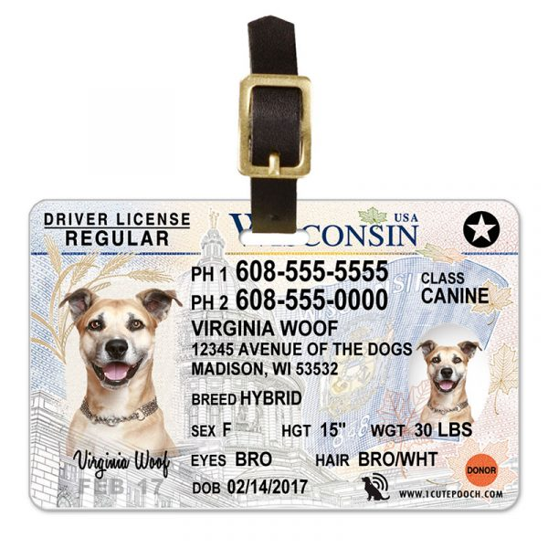 Wisconsin Driver License Pet Luggage Tag
