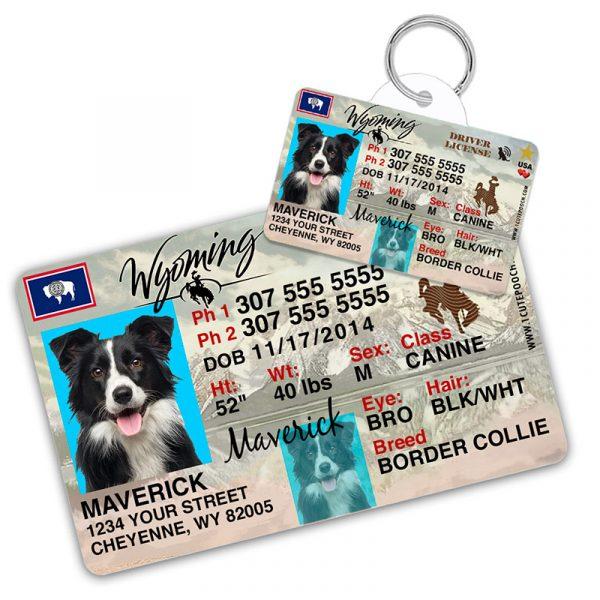 wyoming driver license pet id tag 800