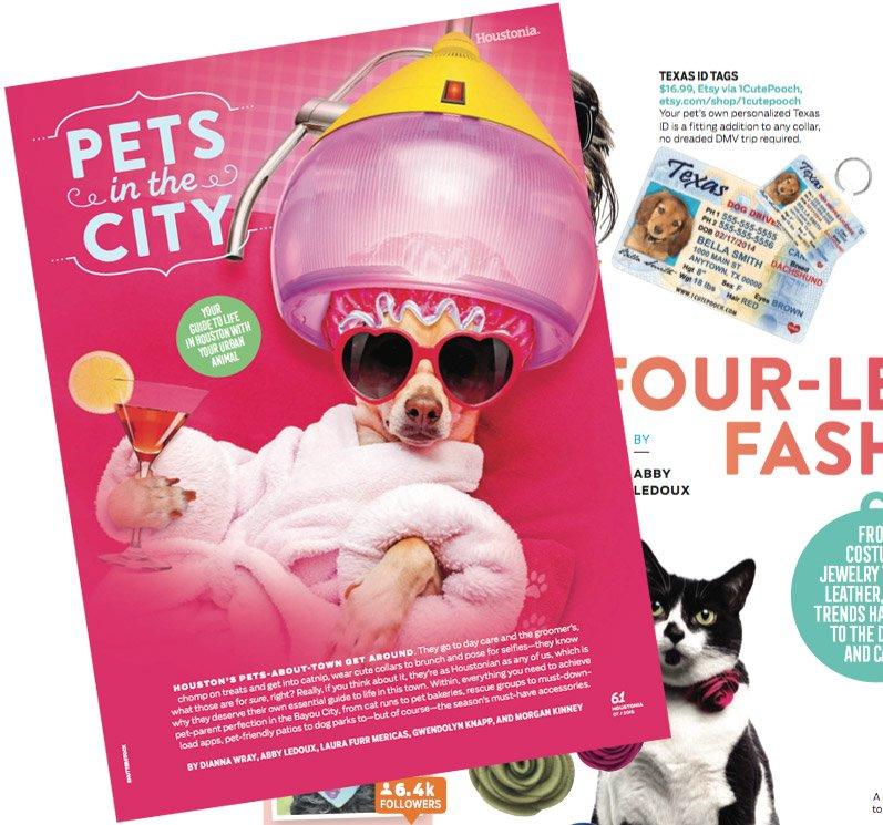 1 Cute Pooch Houstonia Magazine