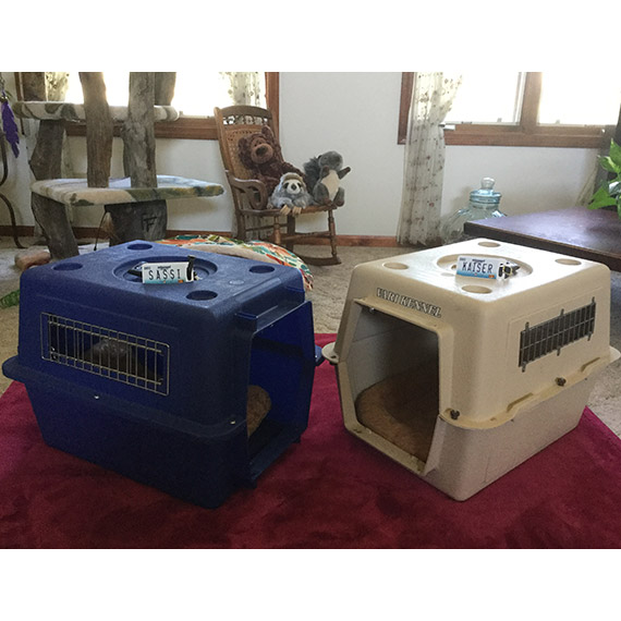 Missouri License Plate Pet Luggage Tag Customer Photo