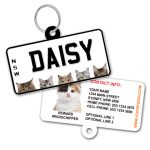 New South Wales Number Plate Cat ID Tag