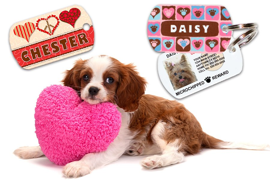 1 Cute Pooch Shop Hearts Themed Pet ID Tags