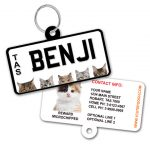 Tasmania Number Plate Cat ID Tag
