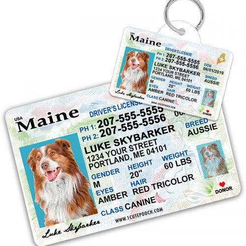Maine Pet Driver License Wallet Card and Pet ID Tag