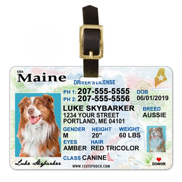 Maine Pet Driver License Luggage Tag