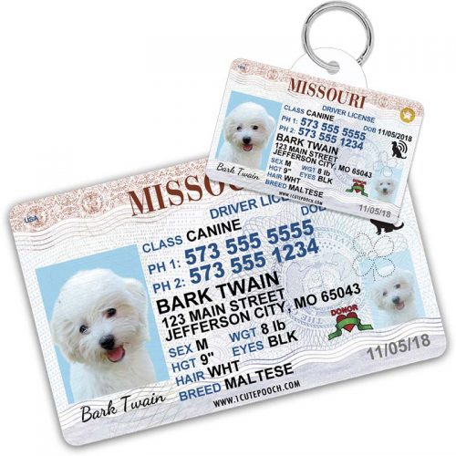 Missouri Driver License Pet ID Tag and Wallet Card