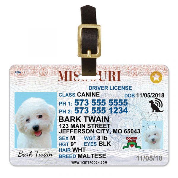 Missouri Driver License Pet Luggage Tag