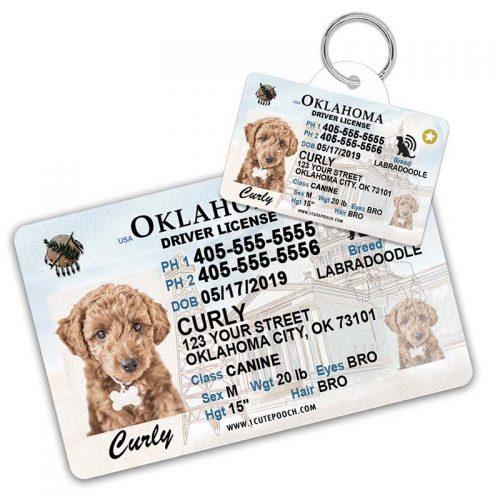 Oklahoma Driver License Pet ID Tag and Wallet Card