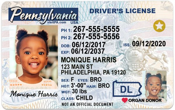 Pennsylvania Kid Driver License
