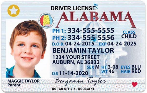 Alabama Kid Driver License