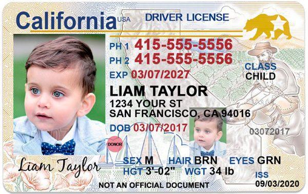 California kid driver license