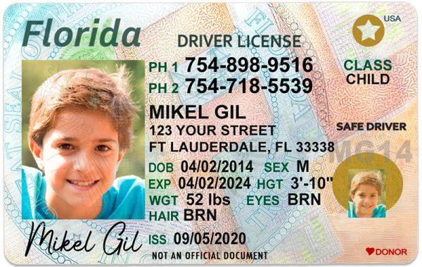 Florida Kid Driver License