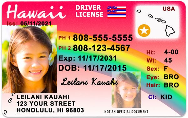 Hawaii Kid Driver License