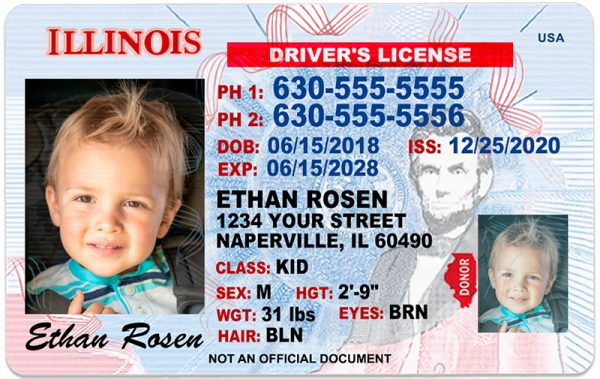 Illinois Kid Driver License