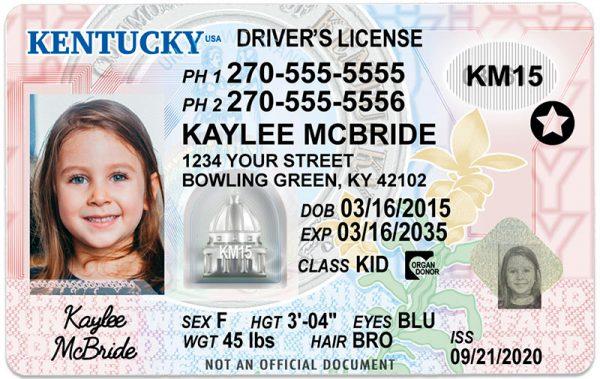 Kentucky Kid Driver License