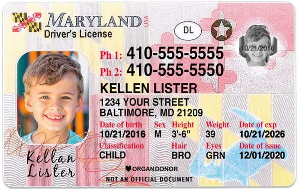 Maryland Kid Driver License
