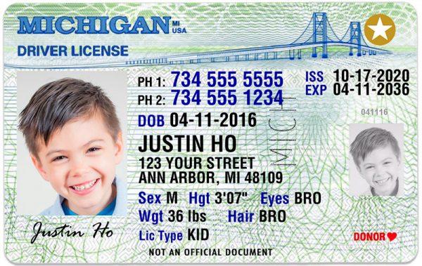 Michigan Kid Driver License