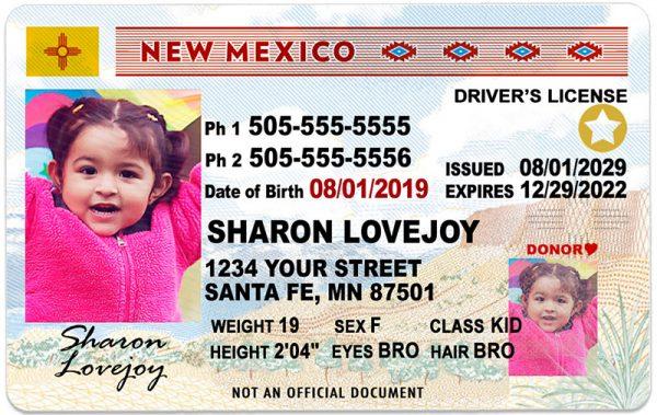 New Mexico Kid Driver License