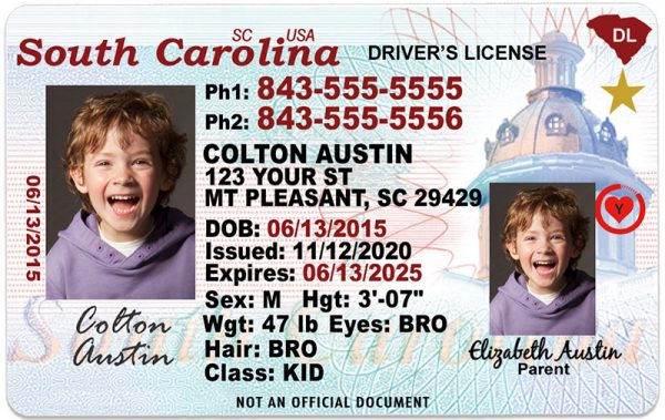 South Carolina Kid Driver License