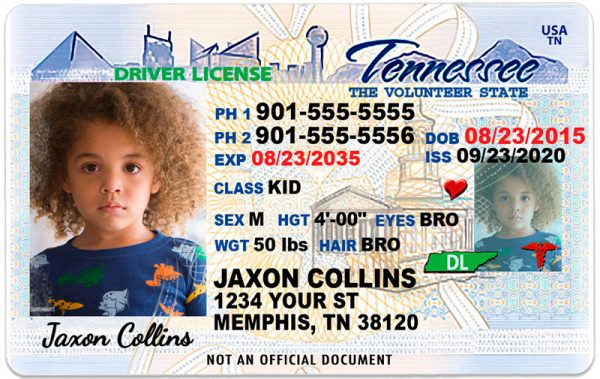 Tennessee Kid Driver License