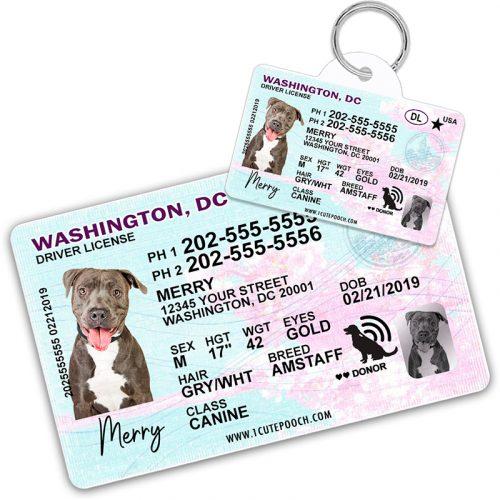 Washington DC Pet Driver License