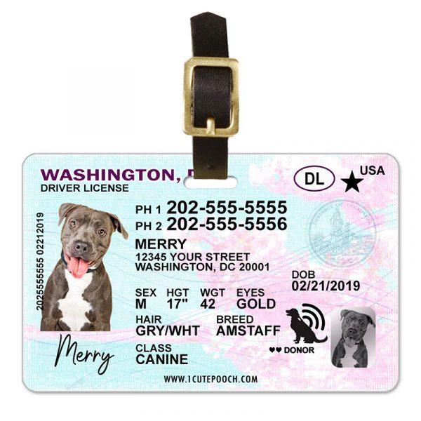 Washington DC Pet Driver License Luggage Tag