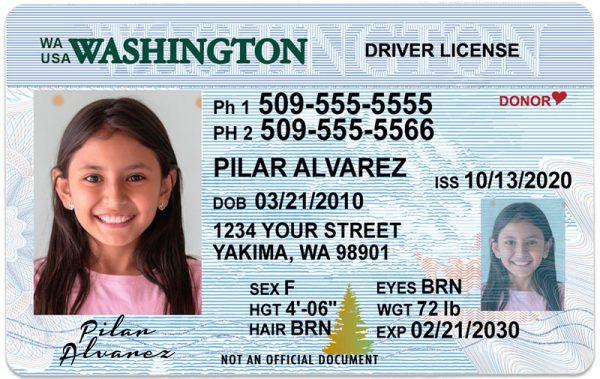 Washington Kid Driver License