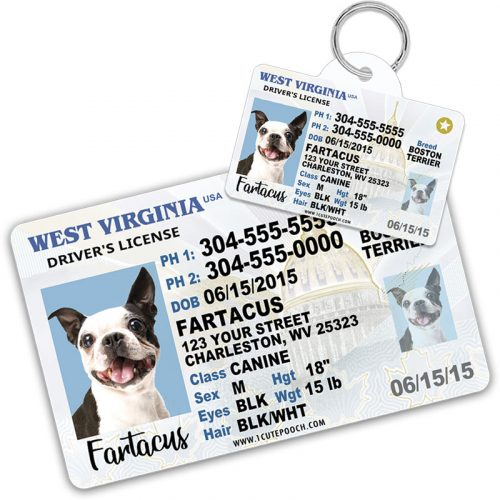 West Virginia Pet Driver License ID Tag