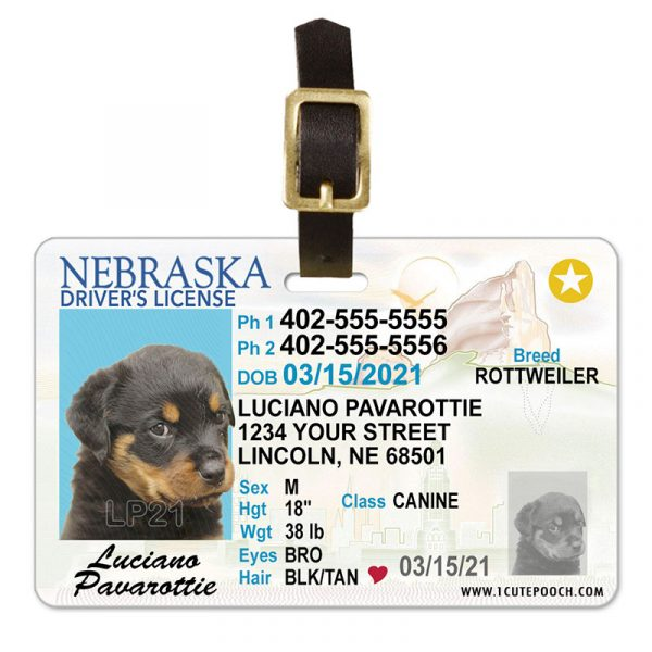 Nebraska Pet Driver License Luggage tag