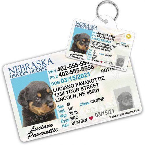 Nebraska Pet Driver License Wallet Card and ID Tag