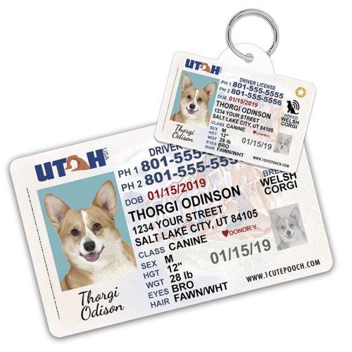 Utah Pet Driver License Wallet Card and ID Tag