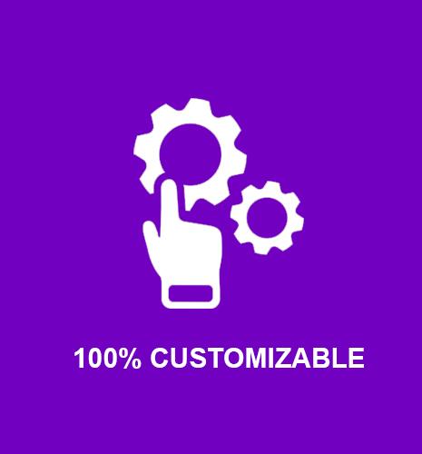 100 customization