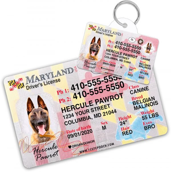 Maryland Pet Driver License Wallet Card and ID Tag