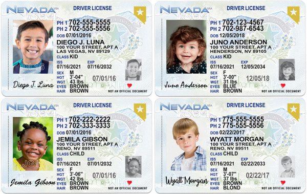Nevada Kid Driver License Collage