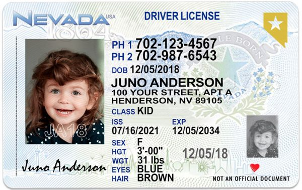 Nevada Kid Driver License