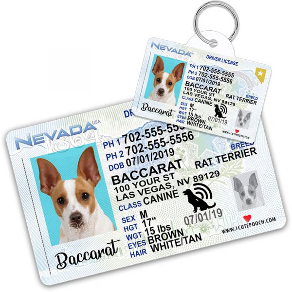 nevada pet driver license tag 800