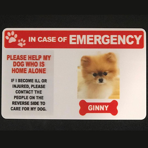 pet emergency card customer photo