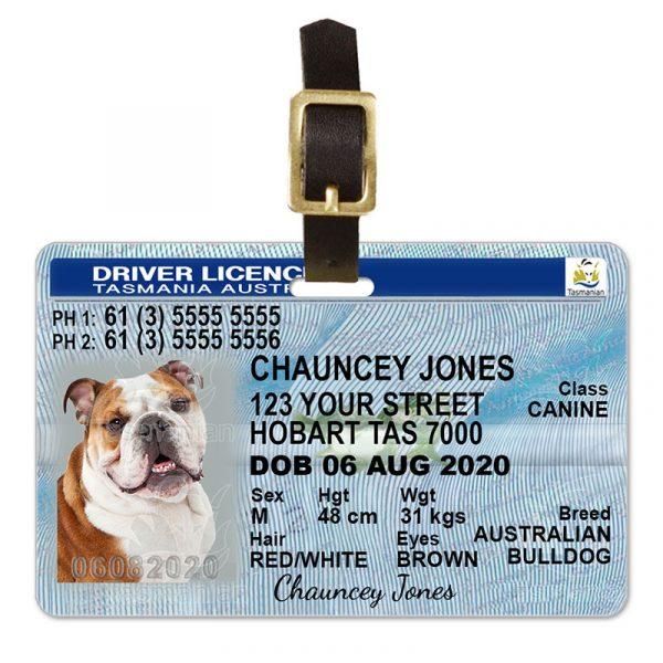 Tasmania Pet Driver License Luggage Tag